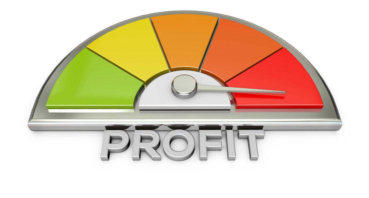 Four Steps to a Successful Profitability Analysis
